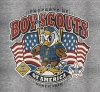 T Shirts • Youth Designs • Cub Scouts Eagle Flag Design by Greg Dampier All Rights Reserved.