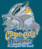 T Shirts • Youth Designs • Cape Cod Dolphin And Whale Wathers Tee by Greg Dampier All Rights Reserved.