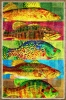 Fine Art • Neon Fish Art Print by Greg Dampier All Rights Reserved.