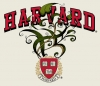 T Shirts • Sporting Events • Harvard Ivey League by Greg Dampier All Rights Reserved.