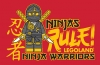 T Shirts • Youth Designs • Lego Ninja Youth Tee by Greg Dampier All Rights Reserved.