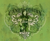 Branding • Candy Coburn by Greg Dampier All Rights Reserved.