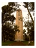 Photography • Bok Tower2 by Greg Dampier All Rights Reserved.