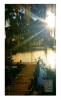 Photography • Dock Sun Beam by Greg Dampier All Rights Reserved.