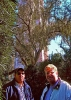Fine Art • Greg Dampier Eric Bullard Bok Tower by Greg Dampier All Rights Reserved.