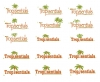 Logos • Tropisentials Logo Designs 1 by Greg Dampier All Rights Reserved.