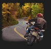 T Shirts • Vehicle Related • Winding Road Motorcycle by Greg Dampier All Rights Reserved.