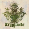 T Shirts • Business Promotion • Club Kryptonite by Greg Dampier All Rights Reserved.