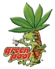 T Shirts • Business Promotion • Greenpool Lizard Logo by Greg Dampier All Rights Reserved.